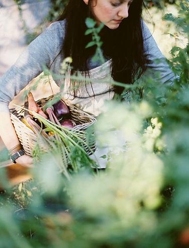 Frauen-Sammeln-Bio-Gemüse
