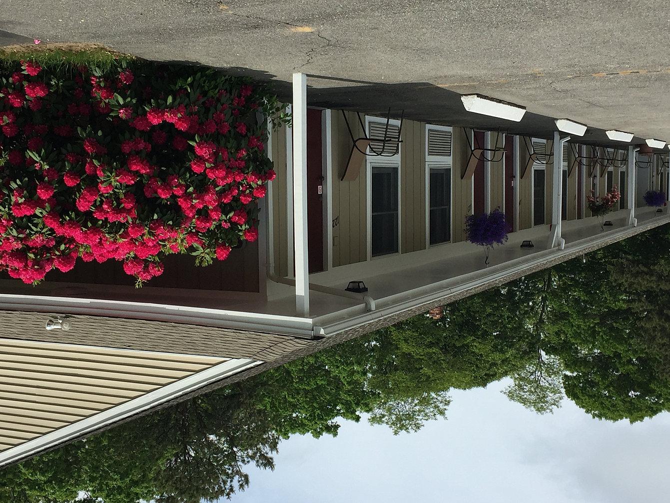 Viking shores motor inn eastham ma motel hotel on cape cod for Viking shores motor inn