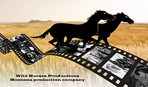 Wild Horses Productions