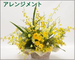 名古屋市西区の花屋なら「小川屋園芸」
