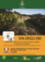 VDD_cover.jpg