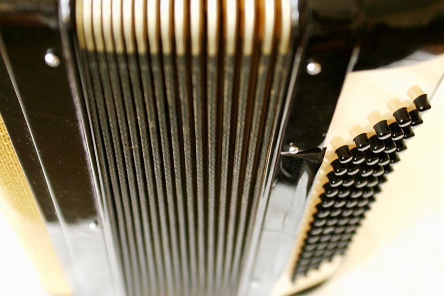 Música Total Aguascalientes | reparacion instrumento musical Accordion