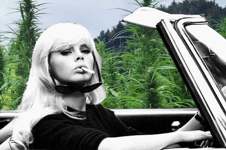 6 Women Worth Watching in the Weed Industry