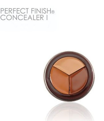 Fashion Fair Perfect Finish Concealer More Concealers