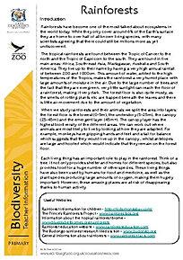 Animal Habitats: Rainforest | Worksheet | Education.com