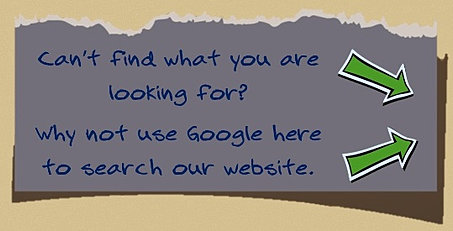 use google custom search to search our website