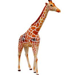 3d model animals voltagebd Images