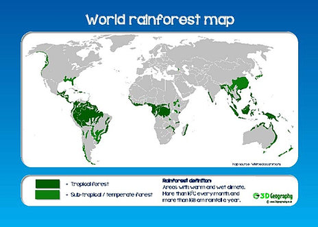 What are rainforests a definitive guide rainforest map sciox Image collections