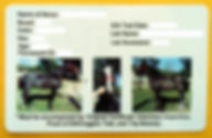 horse equine health certificate passport