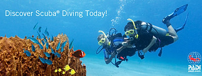 scuba diving singapore, dive shop singapore, diving singapore