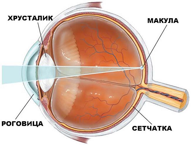 Плохое зрение у ребенка в год