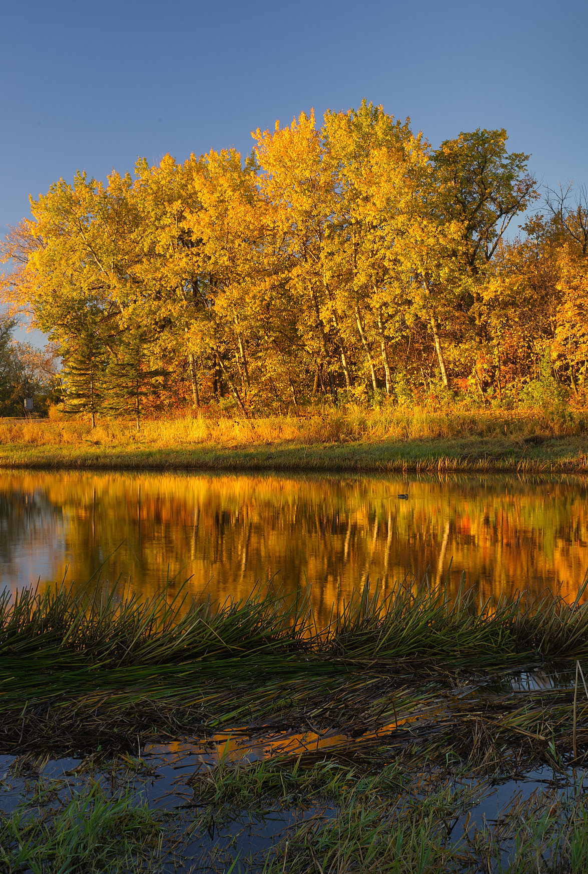 Winnipeg Landscape Photographer