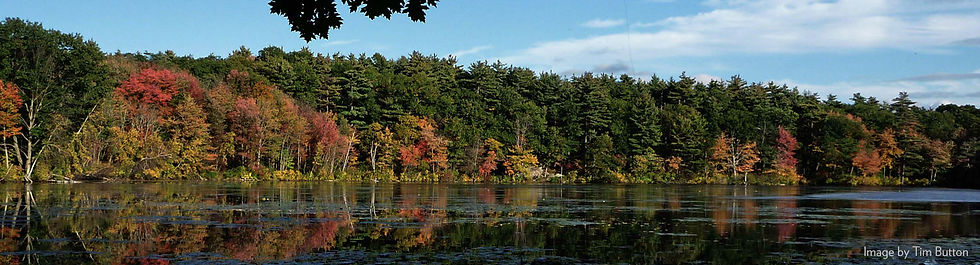 Fawn Lake header.jpg