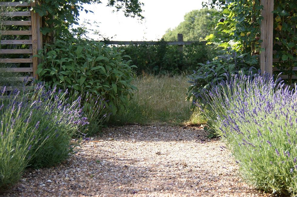 long garden design and landscaping