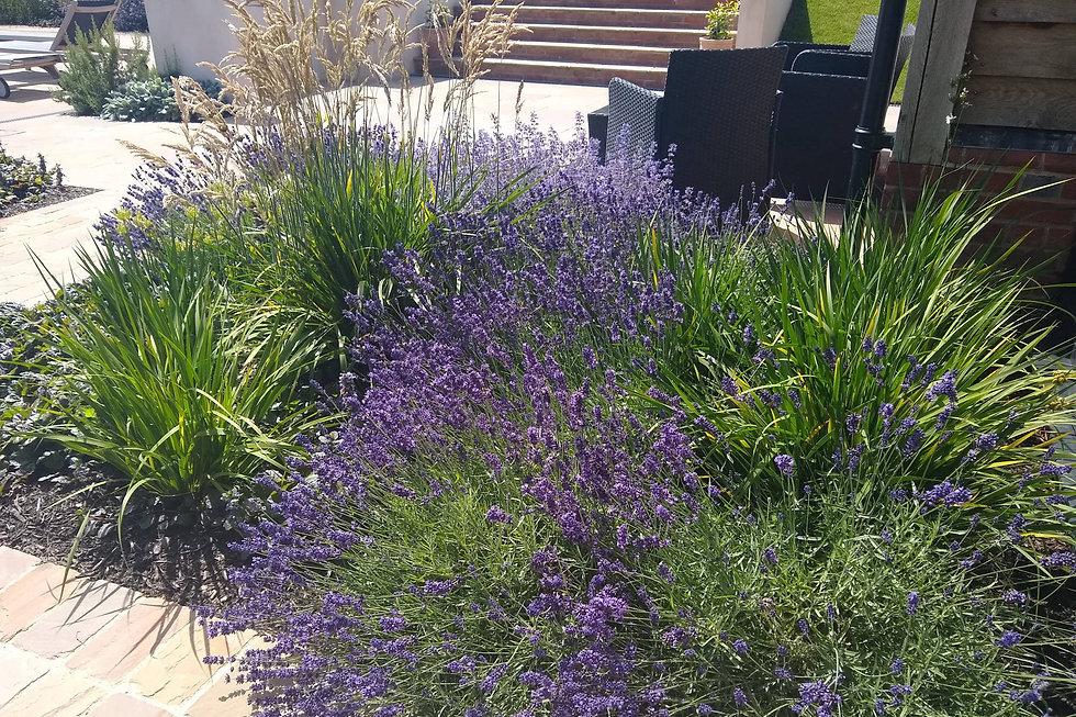 West-Sussex-7-garden-planting-design.jpg
