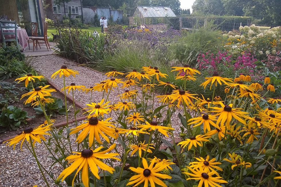 East-Sussex-7-garden-design-landscaping.