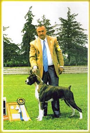 """El Gobernador """"Roca"""""""