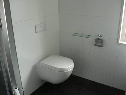 Kleine Badkamer Indeling ~   Badkamer renovatie  Tegelen badkamer vloer sanitair renovatie