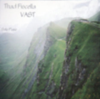 Vast by Thad Fiscella