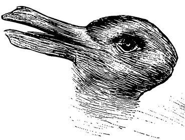 Duck-rabbit-Pareidoli.jpg
