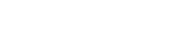 BZ Banner Logo White Text.png