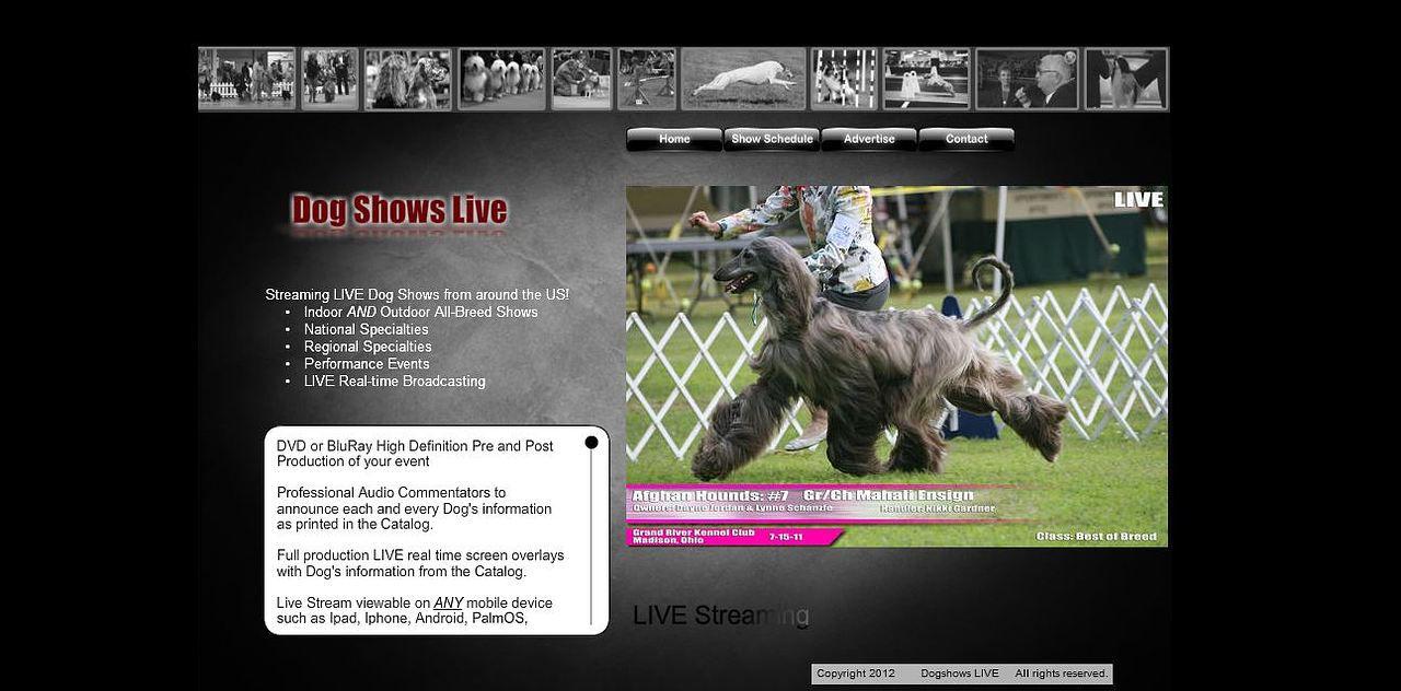National Dog Show  Live Stream Free