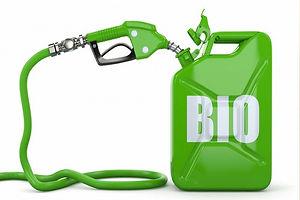 biofuel_570_850.jpg
