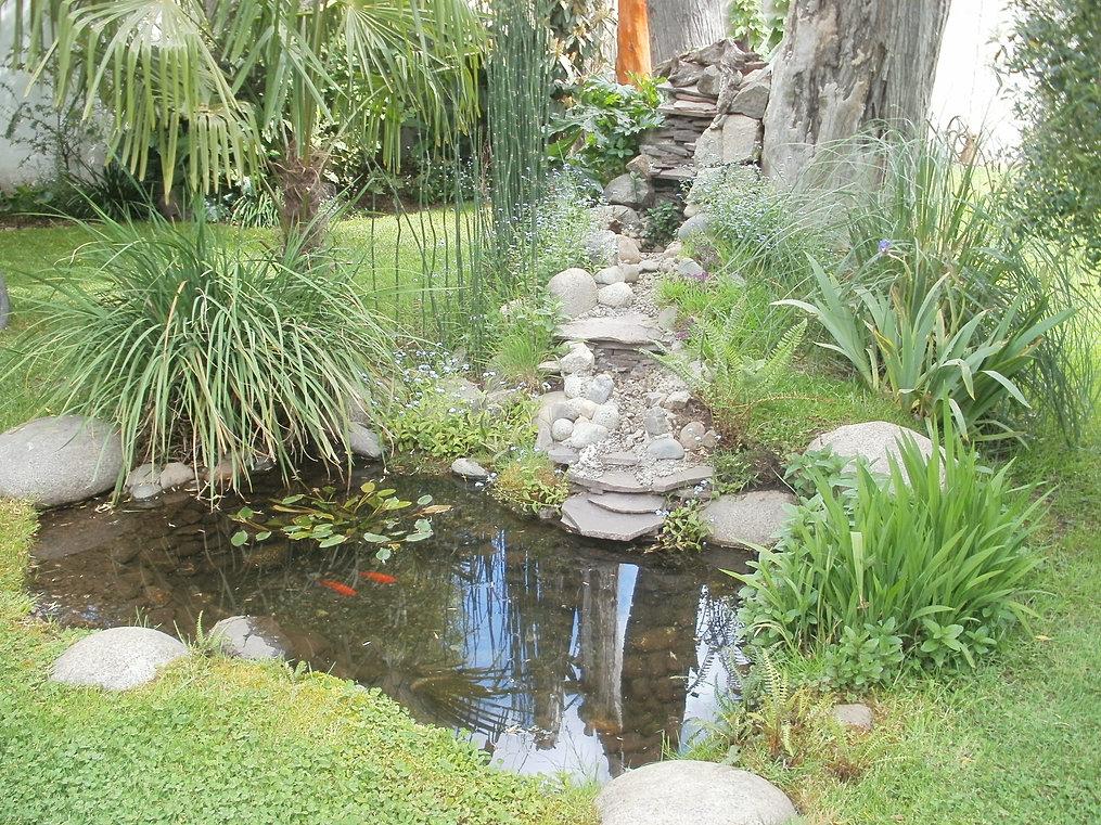 Estanques y cascadas for Estanques en argentina