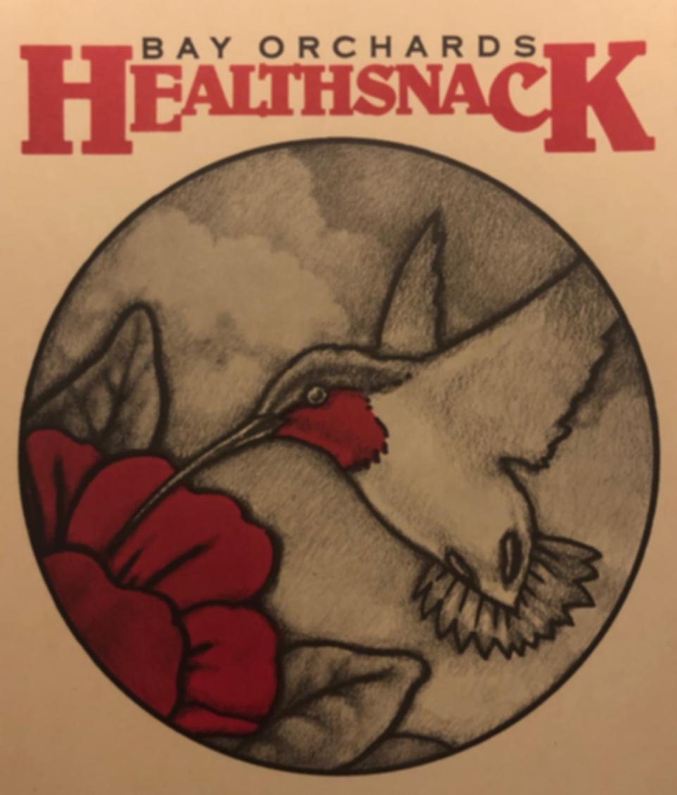 Healthsnack logo.png