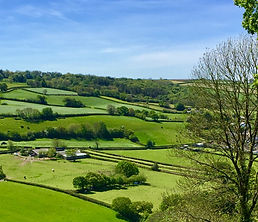 13.5.19 strip field view Torrington vall