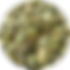 medium_Pumpkin_Seed_Kernel_0731061919.pn