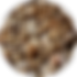 sunflowerseed_0731062023.png