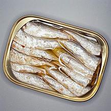Brisling Sardines