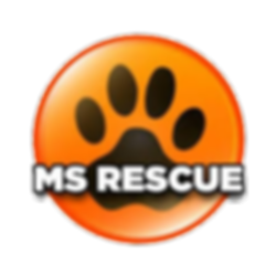 ms rescue logo.png