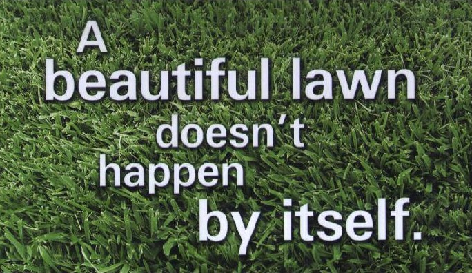 Lawn Care Pictures - 1000do