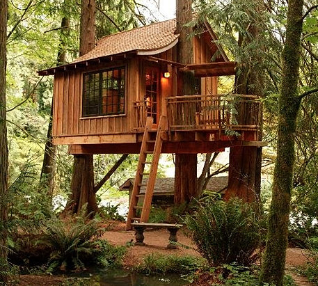 Prime Time Treehouses Tree House Models And Ideas For Adults Kids