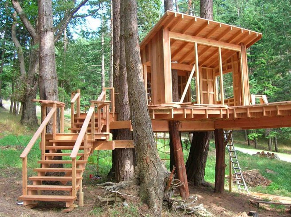 We build this tree house on your site for $7,450