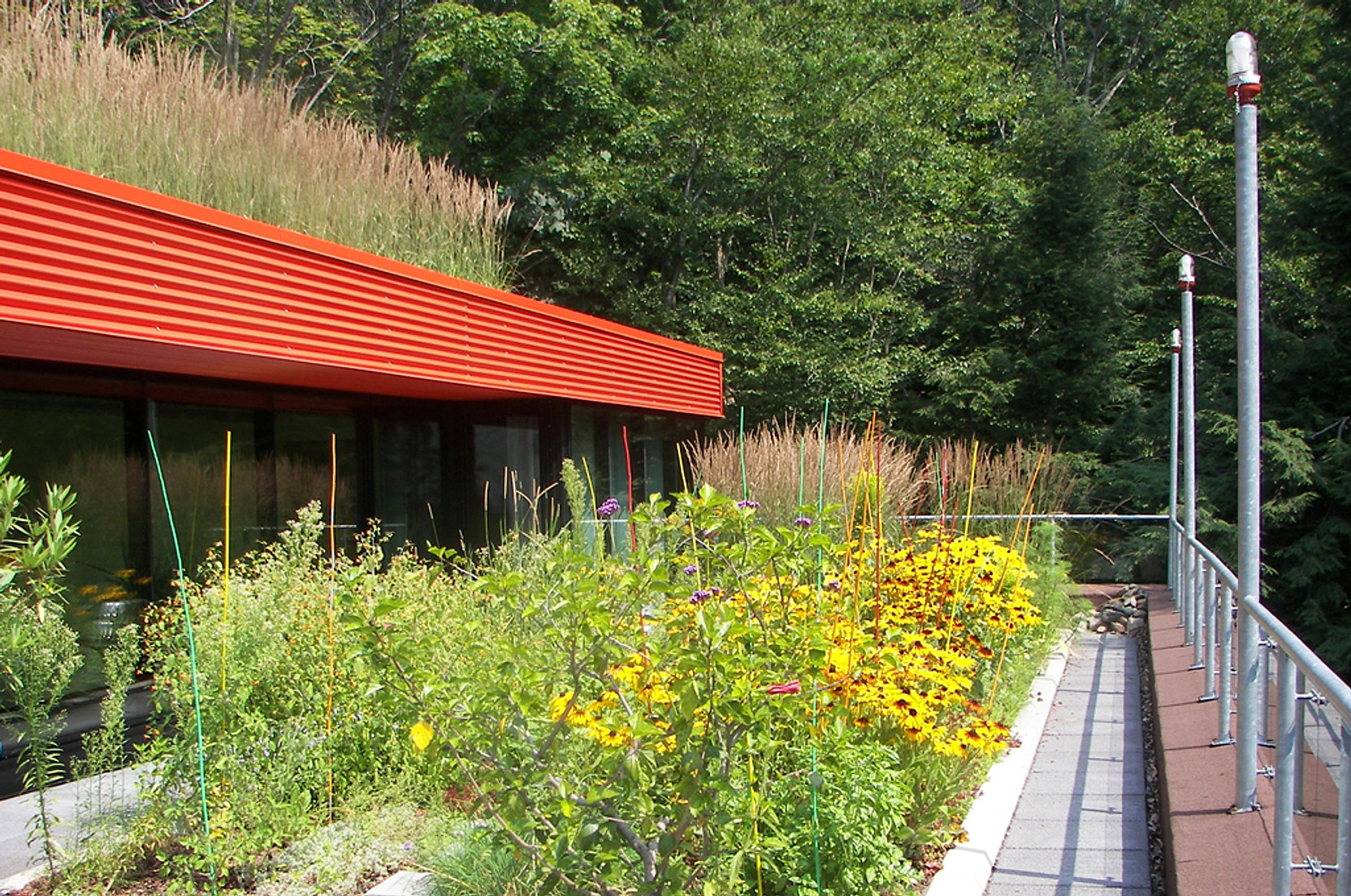 Petrone architecture inc for Architecture du paysage