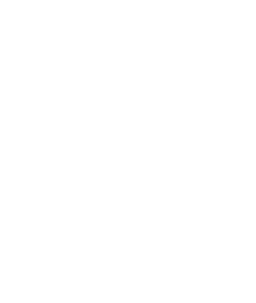 __pin outlined white.png