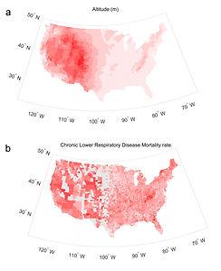 Epidemiology 그림 1.jpg