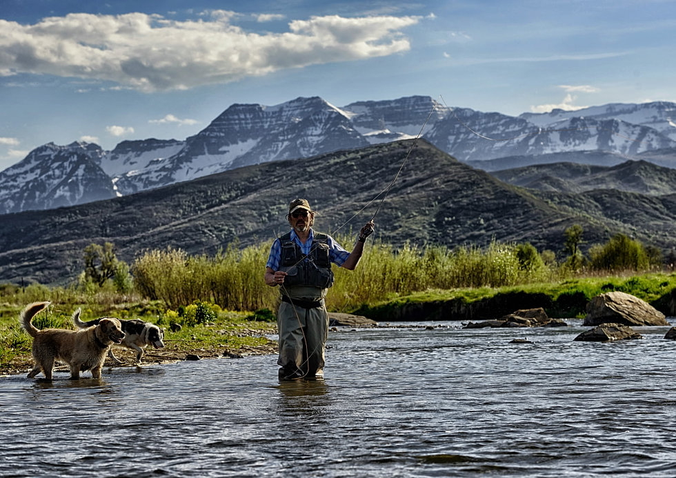 Fly fishing provo river for Provo river fly fishing