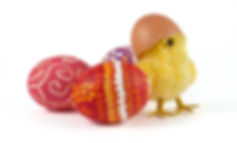 chick-and-easter-eggs-picture-id18377310