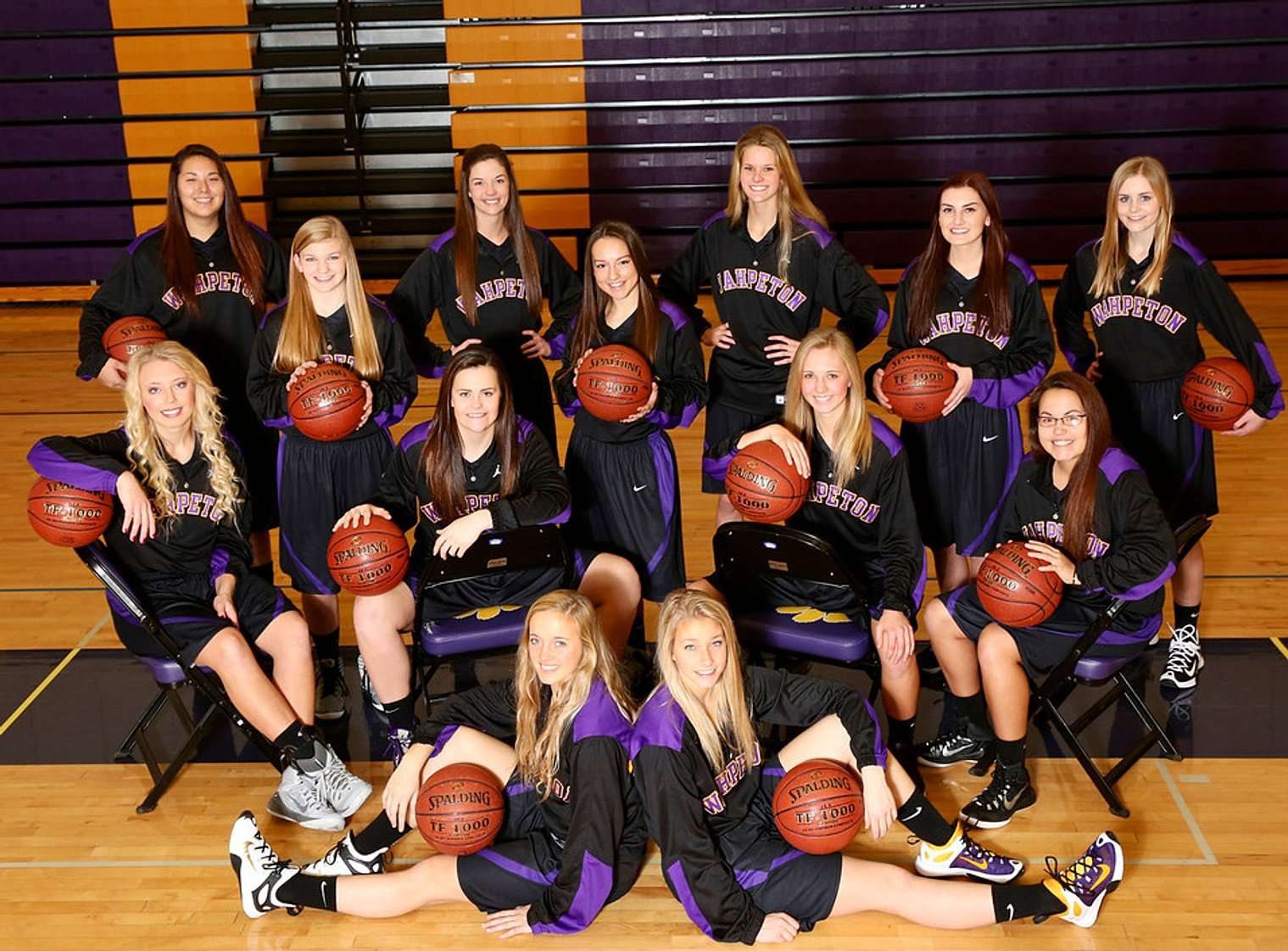 WHS_2015-16_Team_WebCover2_edited