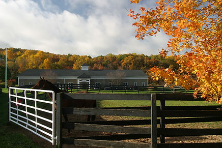 NJEC fall horse and clinic.jpg