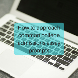 I need help with choosing college essay prompt?
