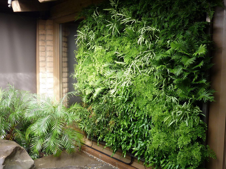 Jestar ideas y construcciones sas jardines verticales - Jardines verticales interiores ...