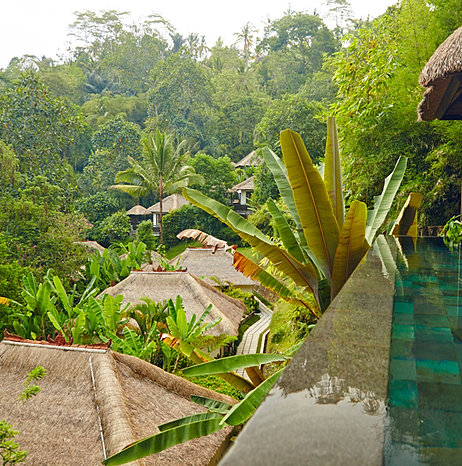 hanging gardens ubud la plus belle piscine du monde. Black Bedroom Furniture Sets. Home Design Ideas