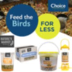 Bird Food and Seed