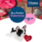 Valentines Bulldog.png