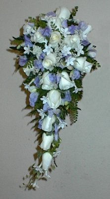 Lavender - 7